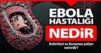 Ebola virüsü hastalığı nedir, ebola nasıl bulaşır hakkında detaylı bilgi.