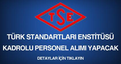 türk standartları enstitüsü, personel alımı