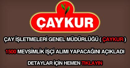Çaykur 1500 mevsimlik işçi alımı ilanı