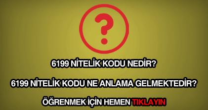 6199 nitelik kodu nedir?