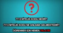 7113 nitelik kodu nedir?