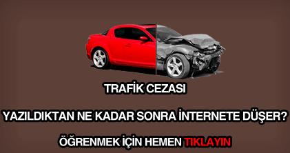 Trafik cezası internete ne zaman düşer?