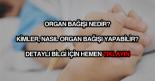 Organ bağışı nedir, nasıl yapılır?
