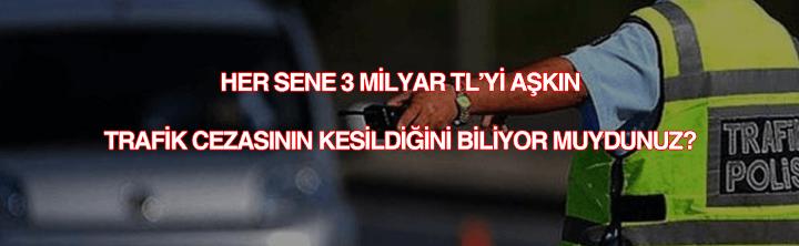 Trafik cezası öğrenme