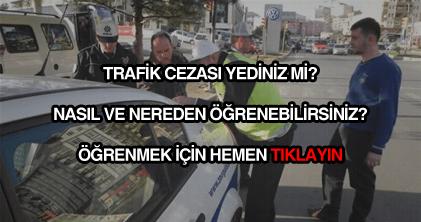 Trafik cezası sorgulama öğrenme