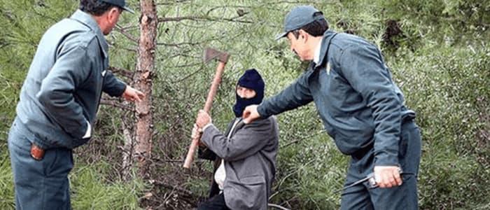 Orman muhafaza memuru kıfayetleri