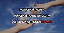 Kooperatif nedir, nasıl kurulur?