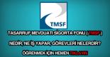 TMSF nedir, ne iş yapar?