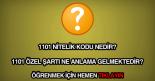 1101 nitelik kodu nedir?