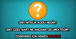 2001 nitelik kodu nedir?