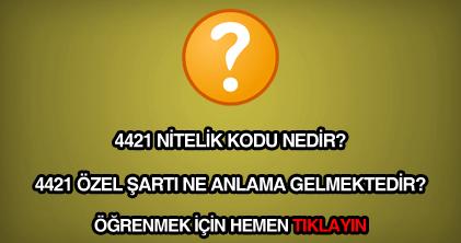 4421 nitelik kodu nedir?