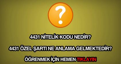4431 nitelik kodu nedir?