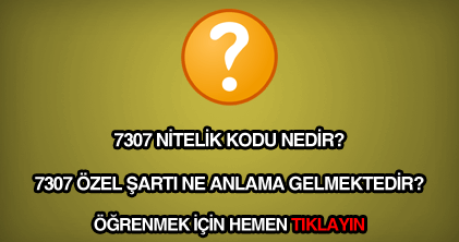 7307 nitelik kodu nedir?