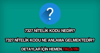 7327 nitelik kodu nedir?