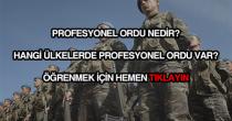 Profesyonel ordu nedir?