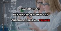 Laborant maaşları